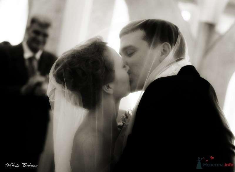 Фото 69599 в коллекции Свадебное портфолио - Свадебный фотограф Никита Полосов