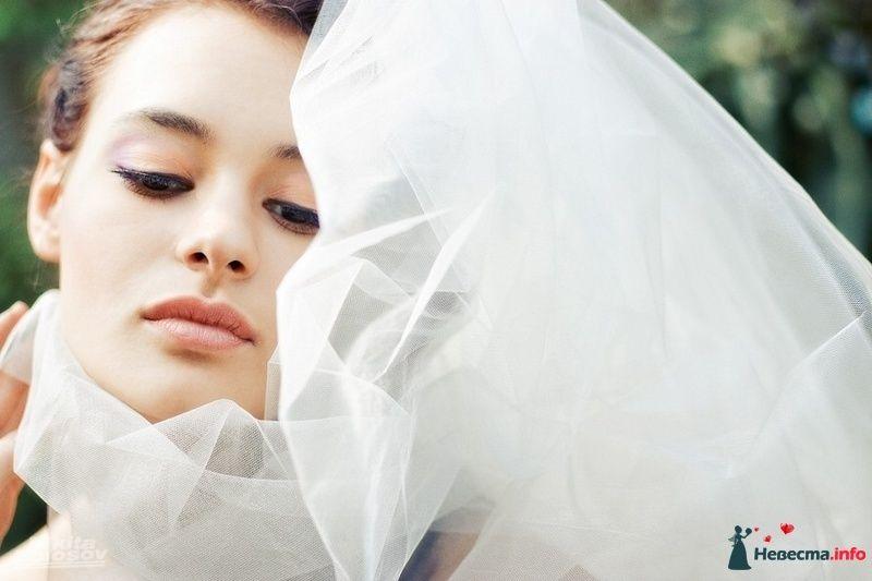 Фото 101384 в коллекции Журнальные фотосессии - Свадебный фотограф Никита Полосов