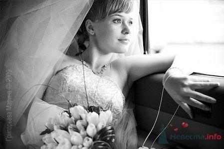 Фото 66446 в коллекции Свадьба - Свадебный фотограф Григорьева Марина