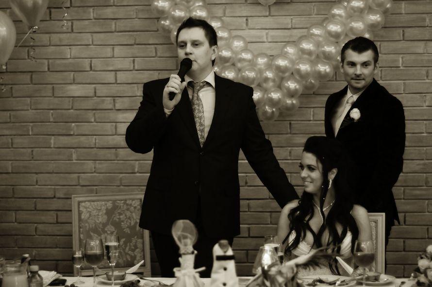 Фото 5391593 в коллекции Портфолио - Павел Будянский - ведущий на свадьбу