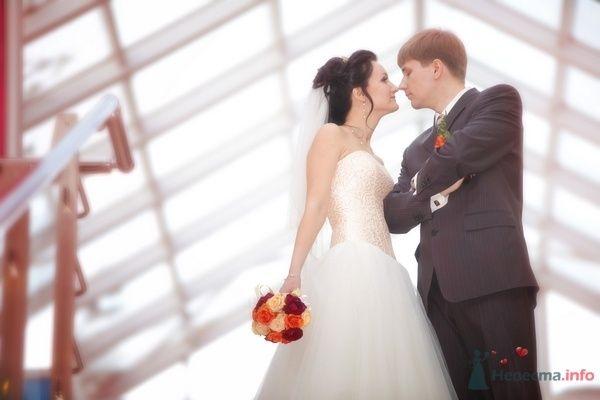 Фото 70304 в коллекции Свадебная фотография - Фотограф Анастасия Яценко