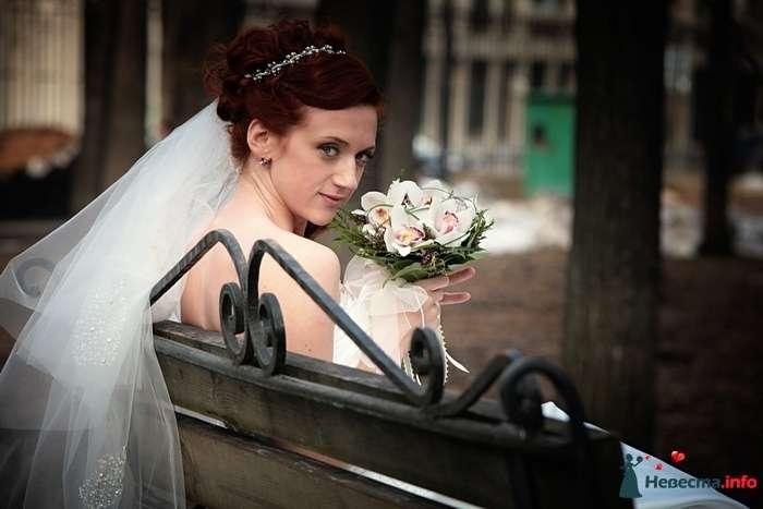 Фото 88861 в коллекции Свадебная фотография - Фотограф Анастасия Яценко