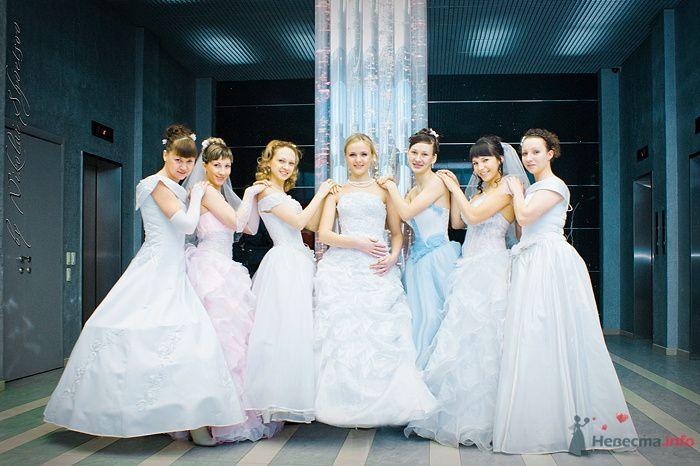 Фото 78886 в коллекции Парад Невест II - Фотограф Швецов Николай
