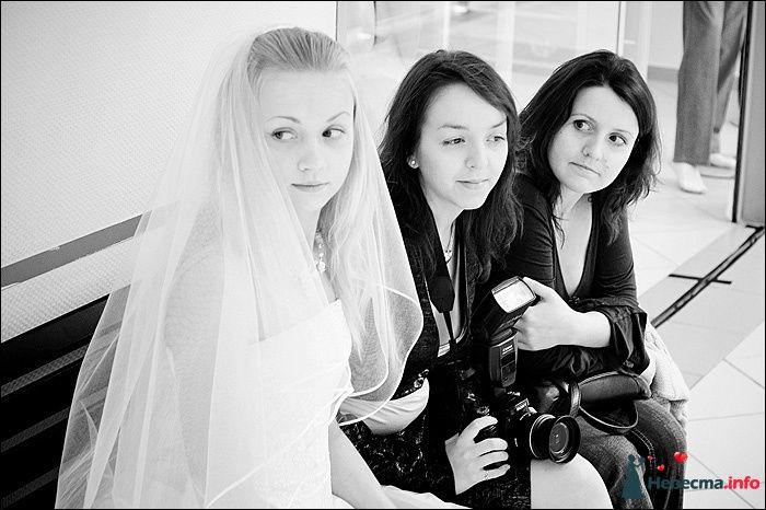 Фото 107768 в коллекции Первая выставка Свадебной фотографии в Перми - Фотограф Швецов Николай