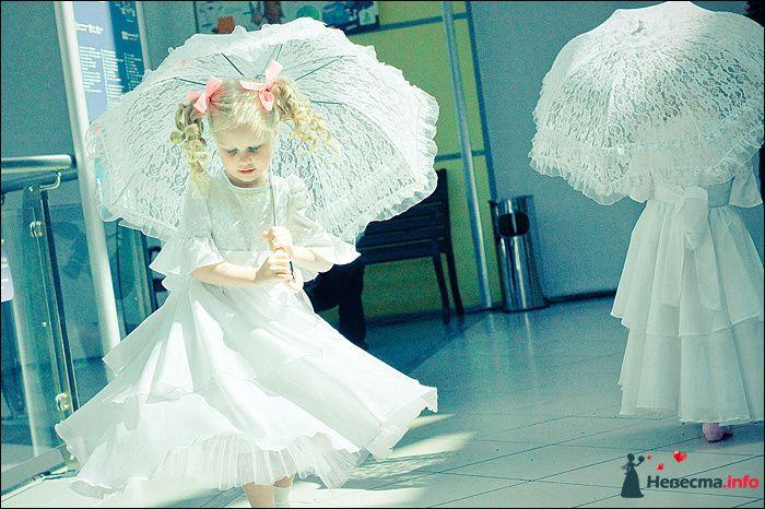 Фото 107803 в коллекции Первая выставка Свадебной фотографии в Перми - Фотограф Швецов Николай