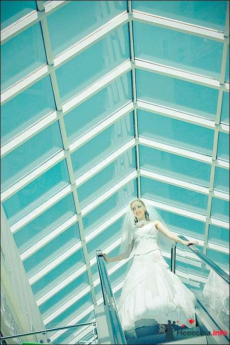 Фото 107804 в коллекции Первая выставка Свадебной фотографии в Перми - Фотограф Швецов Николай