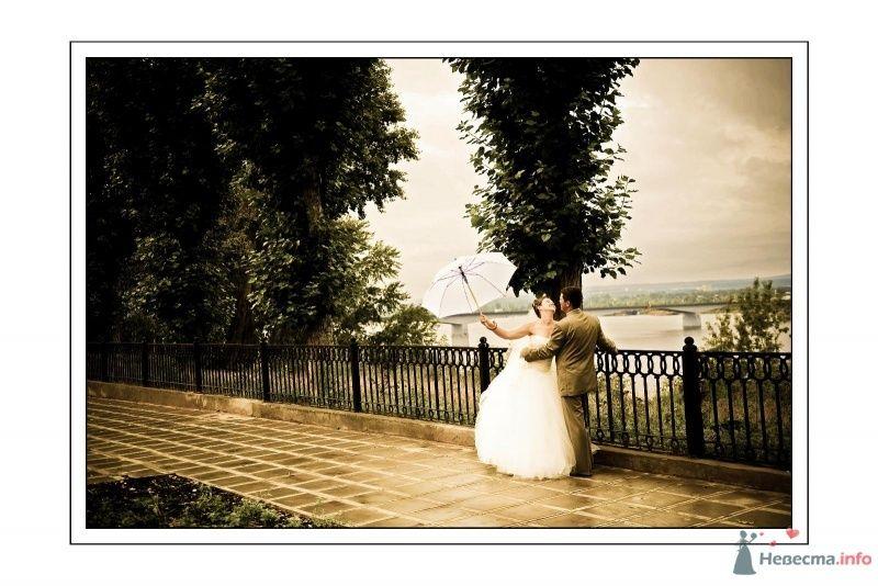 **** - фото 67616 Фотограф Неукрытый Валерий