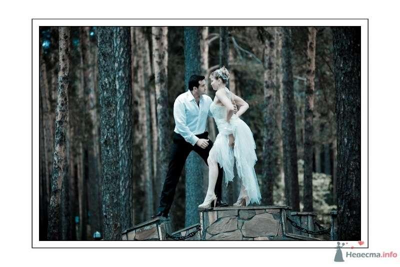 Ольга и Евгений - фото 67621 Фотограф Неукрытый Валерий