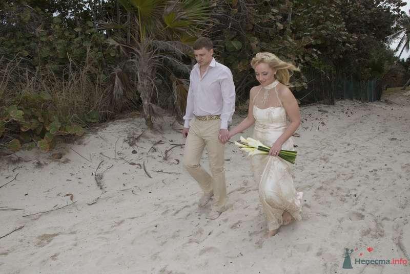 свадьба - фото 76091 Долька