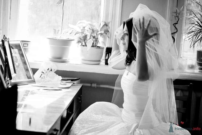 Фото 54295 в коллекции Наша Свадьба 01 августа 2009 г. - Anjuta