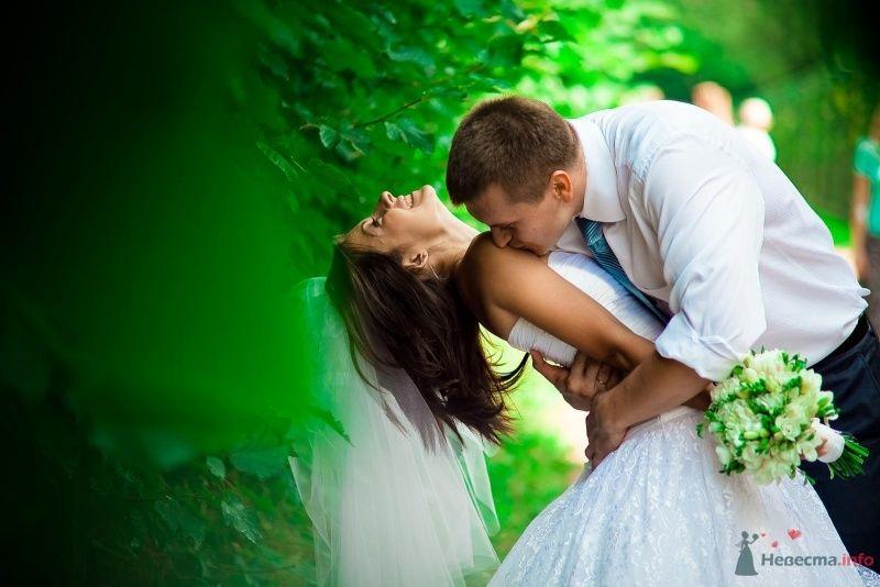 Жених целует невесту на фоне зелени - фото 54356 Anjuta