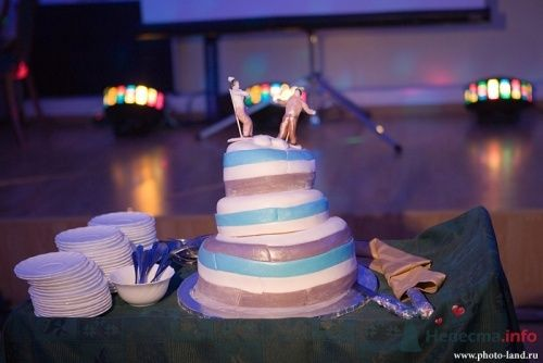 самый веселый свадебный торт - фото 4335 Свадебные фотоистории от Андрея Егорова