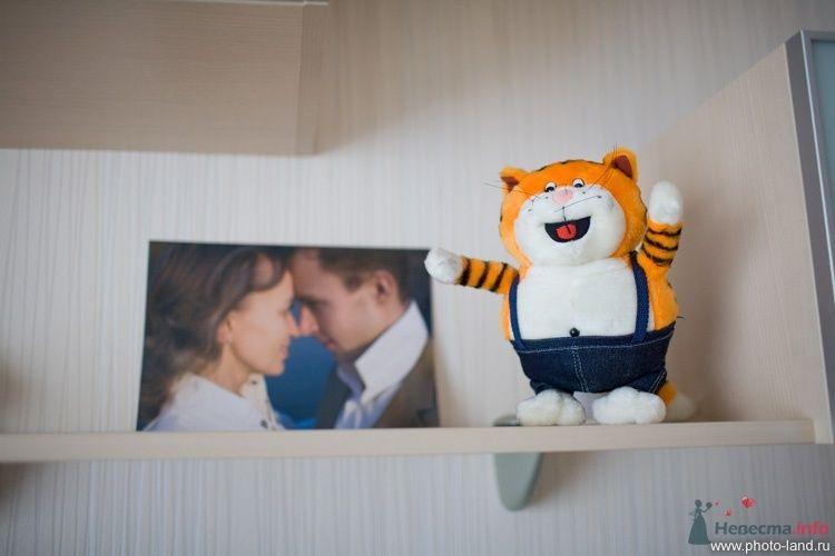 О братьях наших меньших - фото 67365 Свадебные фотоистории от Андрея Егорова