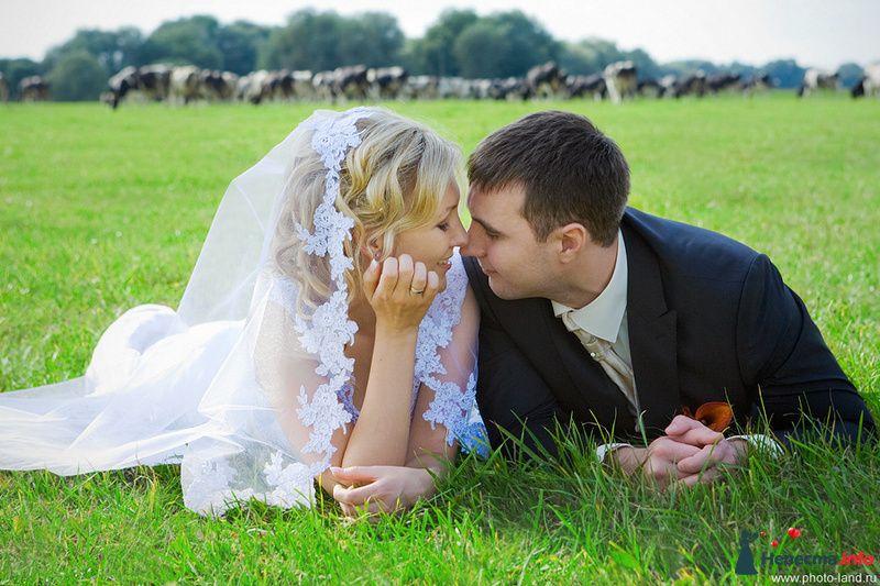 Катя и Саша. Свадьбы форумчанок  - фото 91669 Свадебные фотоистории от Андрея Егорова