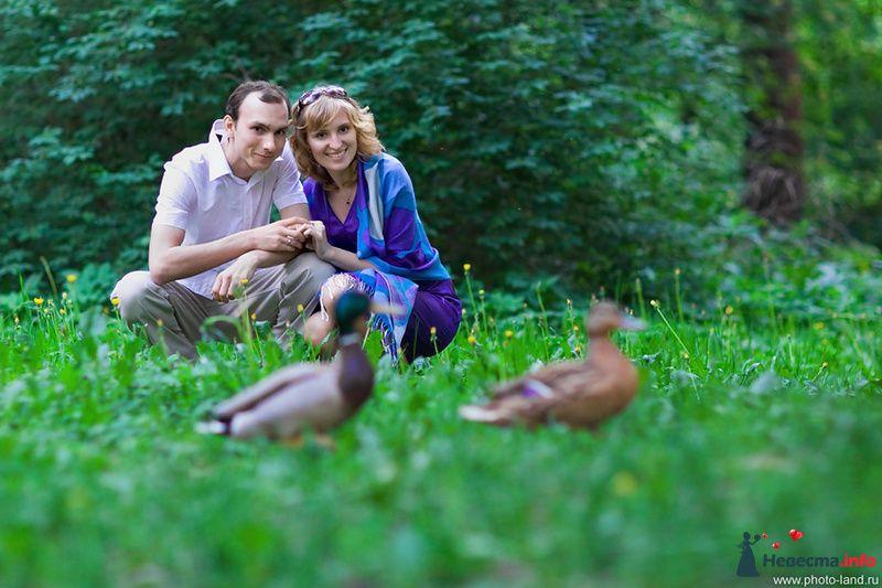 Фото 108183 в коллекции Предсвадебное Лавстори Аллы и Паши - Свадебные фотоистории от Андрея Егорова