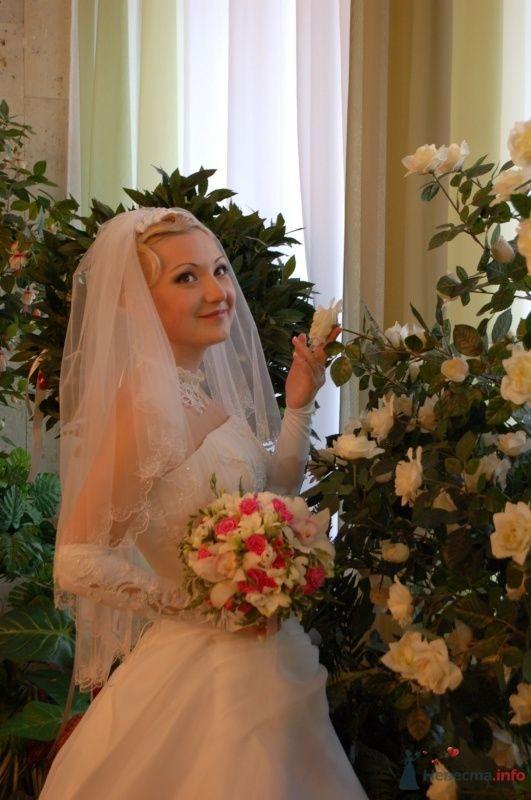 Фото 34020 в коллекции Картинки - Анечка-жена)))))))))