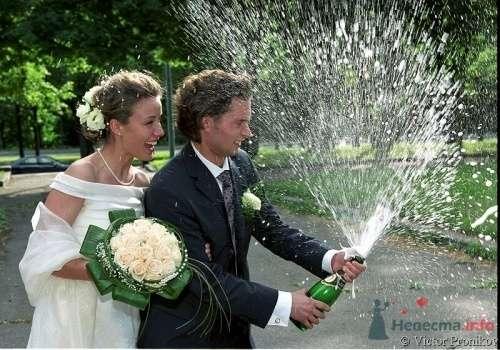 """Фото 5036 в коллекции Мои фотографии - Центр """"SV-Premier"""" - проведение свадеб"""