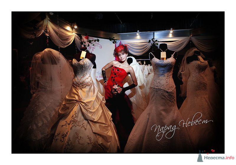 Фото 79182 в коллекции Парад Невест II - Фотостудия Александра Деменева