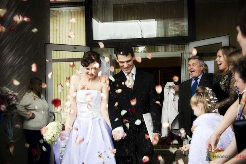 Фото 69833 в коллекции Свадебные фотографии - Свадебный фотограф Сергей Несин