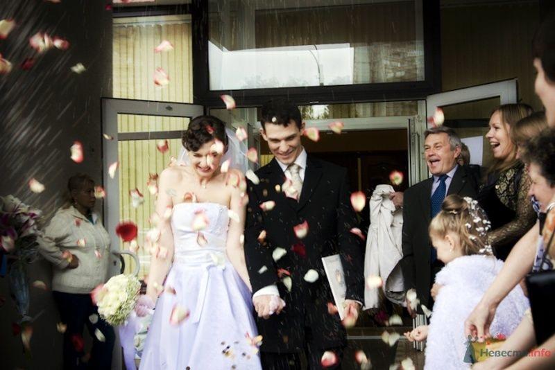 Фото 69833 в коллекции Свадебные фотографии