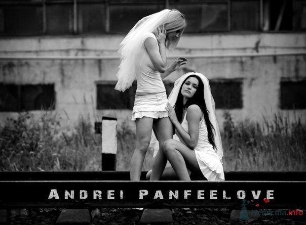 Фото 71798 в коллекции Мои фотографии - Андрей Panfeelove - фотограф