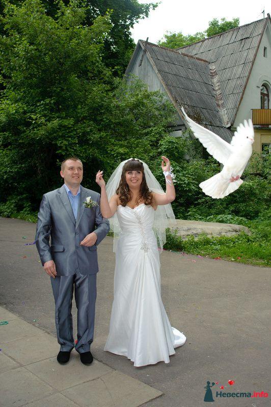 Фото 127352 в коллекции Наша свадьба' 29.05.2010 - Wikiky