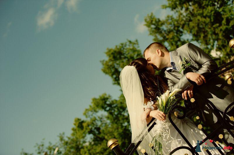 Фото 127395 в коллекции Наша свадьба' 29.05.2010 - Wikiky