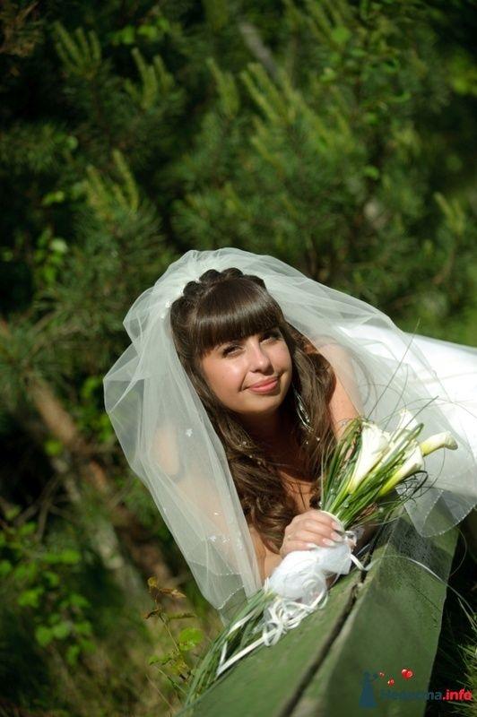 Фото 127433 в коллекции Наша свадьба' 29.05.2010