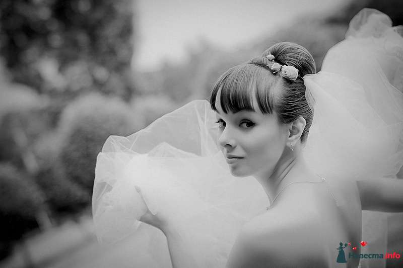 Фото 86767 в коллекции Борис и Тоня - Свадебный фотограф. Татьяна Гаранина