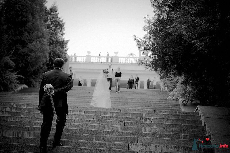 Фото 86773 в коллекции Борис и Тоня - Свадебный фотограф. Татьяна Гаранина