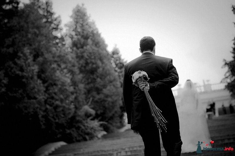 Фото 86774 в коллекции Борис и Тоня - Свадебный фотограф. Татьяна Гаранина