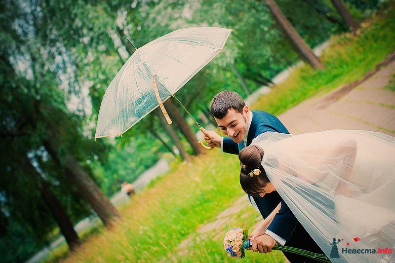 Фото 86777 в коллекции Борис и Тоня - Свадебный фотограф. Татьяна Гаранина