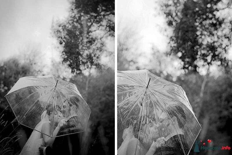 Фото 86779 в коллекции Борис и Тоня - Свадебный фотограф. Татьяна Гаранина