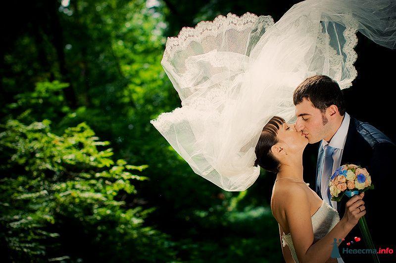 Фото 86795 в коллекции Борис и Тоня - Свадебный фотограф. Татьяна Гаранина