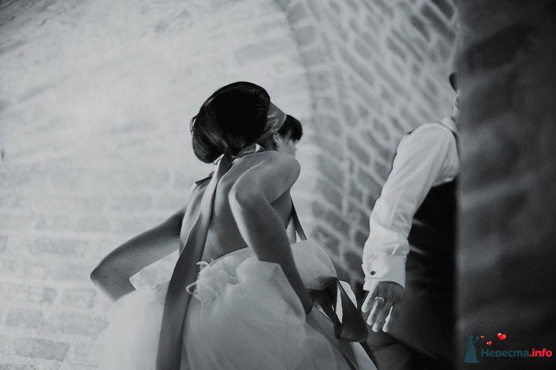 Надюша и Тимур! Свадьба! - фото 87674 Свадебный фотограф. Татьяна Гаранина