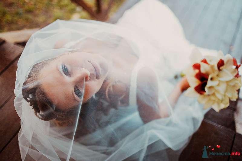 Фото 88978 в коллекции Катя и Серж! Свадебная серия! - Свадебный фотограф. Татьяна Гаранина