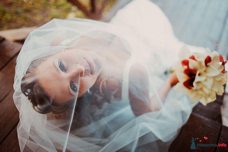 Фото 88978 в коллекции Катя и Серж! Свадебная серия!