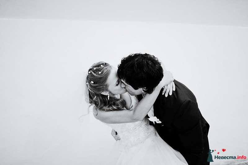 Фото 88981 в коллекции Катя и Серж! Свадебная серия! - Свадебный фотограф. Татьяна Гаранина