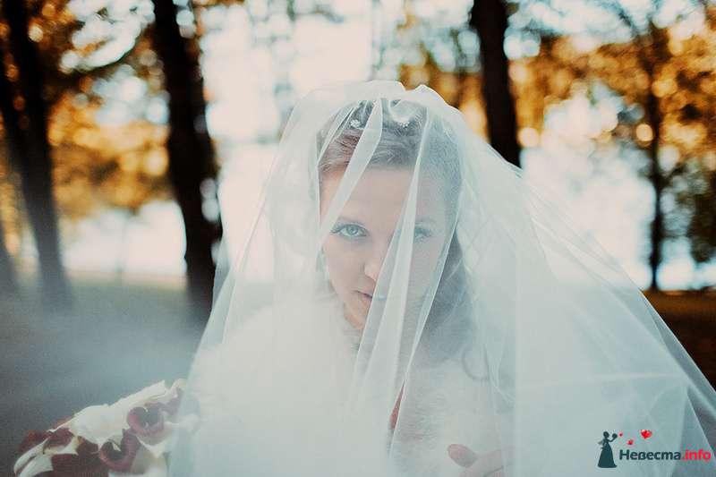 Фото 88986 в коллекции Катя и Серж! Свадебная серия! - Свадебный фотограф. Татьяна Гаранина