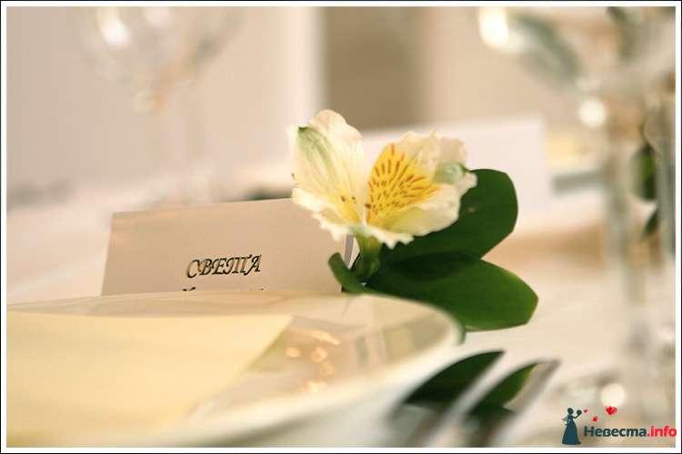 Сервировка стола - фото 112221 Annastrid