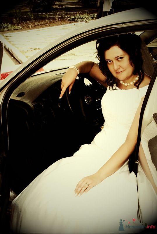 Фото 73345 в коллекции Мои фотографии - Ольгица