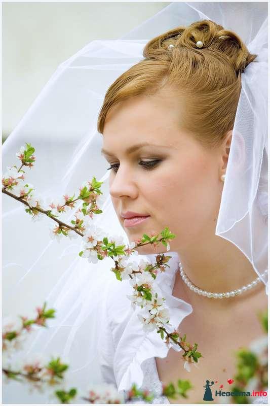 Фото 90471 в коллекции Мои свадебные работы и фотосессии - Невеста01