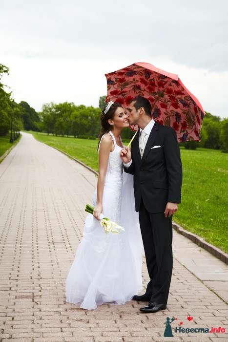 Фото 104312 в коллекции Свадебный - Анастасия Lokofoto - фотограф
