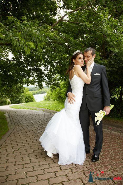 Фото 104315 в коллекции Свадебный - Анастасия Lokofoto - фотограф