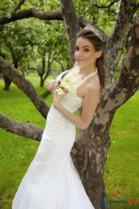 Фото 106477 в коллекции Свадебный - Анастасия Lokofoto - фотограф