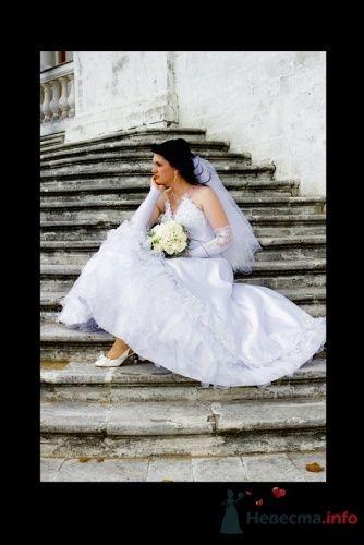 Фото 4463 в коллекции Свадебные - Фотограф Сапелкин Николай
