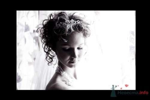 Фото 4464 в коллекции Свадебные - Фотограф Сапелкин Николай