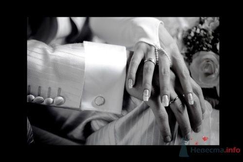 Фото 4465 в коллекции Свадебные - Фотограф Сапелкин Николай