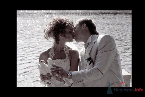 Фото 4473 в коллекции Свадебные - Фотограф Сапелкин Николай