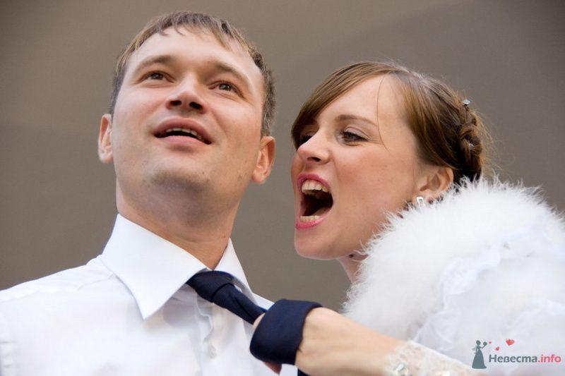 Фото 74004 в коллекции Свадебные радости! - Роман Савин